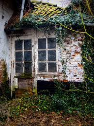 Urban Window Garden Free Images Tree Nature Forest House Texture Leaf Window