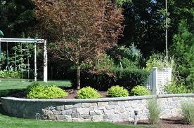 does warm winter weather affect your lawn u0026 plants landscape