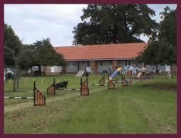 Backyard Agility Course South West Dog Training U0026 Behaviour Centre