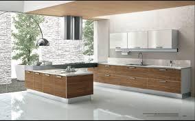 Design Own Kitchen Layout Galley Kitchen Layout Designs Home Design