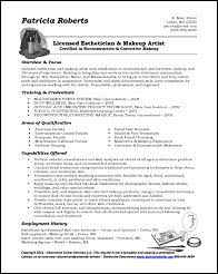 format for resumes resume sles for all professions and levels