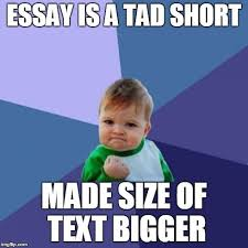 Meme Writing Generator - best of meme writing generator success kid meme imgflip kayak
