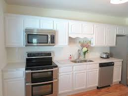 kitchen small kitchen colour ideas new house kitchen designs