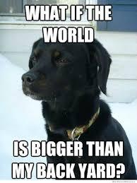 Philosophical Memes - philosophical dog weknowmemes