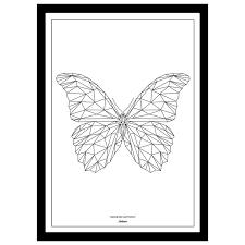 7 best butterfly images on butterflies ideas