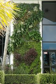 Wall Planters Indoor by Fascinating Home Exterior Facade With Green Planters Attached On