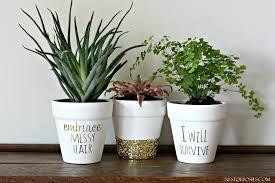 Planter Pot Planter Pots Go From Boring To Spectacular The Diy Queen