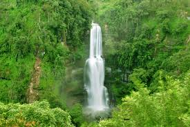 famous waterfalls 7 stunning waterfalls in india which are right out of a harry