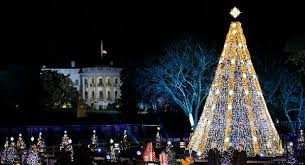 christmas tree 2015 national christmas tree national christmas tree lighting