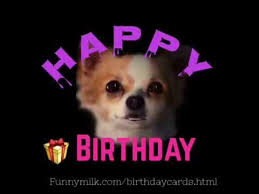 happy birthday greeting card from a cute puppy dog youtube