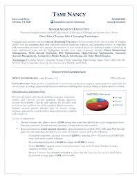 account executive resume accounting executive sle resume senior account executive
