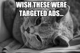 Personalized Memes - memes marketing how cats birbs and other animals can help you