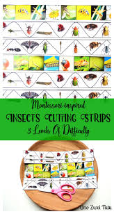 realistic insects cutting strips for toddlers and preschoolers