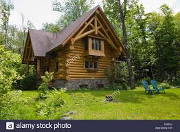 2003 built cottage style residential log home with a brown asphalt