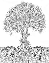 coloring pages for adults tree 511 best tree art coloring pages images on pinterest coloring