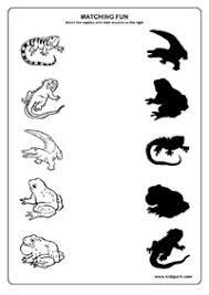 shadow fun worksheets activity sheets for kids funs worksheets