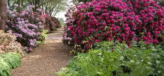 Suche K Henzeile Startseite Park Der Gärten