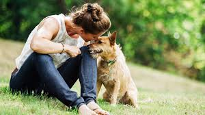 grieving the loss of a pet 5 ways to help heal when grieving the loss of a pet