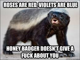 Honeybadger Meme - honey badger doesn t give a fuck about you honey badger dont