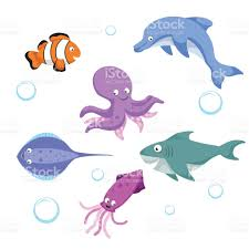 vector cartoon different sea and ocean animals set isolated vector