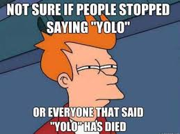 yolo proves natural selection