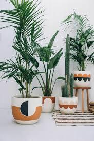 Best Indoor Plants For Oxygen by 50 Best Indoor Plants Inspiration For Apartements Decoratio Co