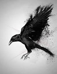 best 25 crow tattoos ideas on pinterest raven tattoo crow and
