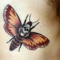 style colored belly of butterfly with bones and