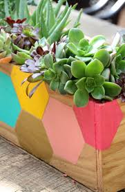 succulent planter pinterest challenge diy succulent planter box pepper design blog