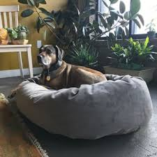 size large dog pet beds for less overstock com