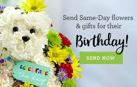 Same Day Delivery Gifts Same Day Gift Baskets Same Day Gifts Delivery 1 800 Flowers Com