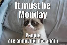 Grumpy Cat Monday Meme - grumpy cat memes quickmeme