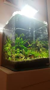 stunner led aquarium light strips dennerle nano cube 30 l nano cube pinterest cube