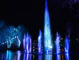 enchanted forest of light tickets illuminated enchanted forest christmas at stockeld park yorkshire