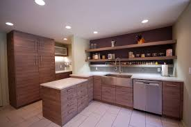 Ikea Modern Kitchen Cabinets Ikea Kitchen Cabinets With Custom Doors
