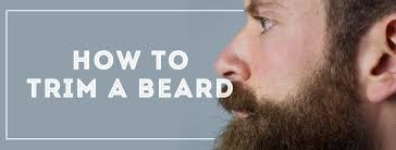 best beard length mm how to trim a beard gentleman s gazette