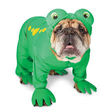 costumes for dogs frog costume for dogs frog dog costume