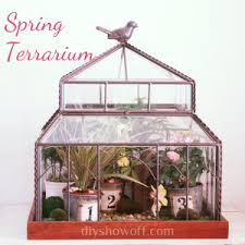 hoping a mini greenhouse inspires a green thumb hometalk