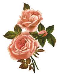vintage thanksgiving clipart vintage rose clipart u2013 101 clip art