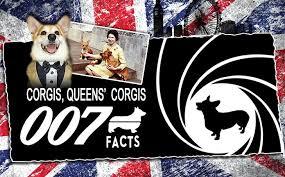 Queen Corgis Corgis Queen U0027s Corgis U2013 007 Facts Cape Fear Pets