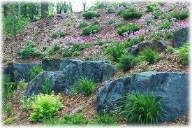 gardens of rice creek natural rock landscapes