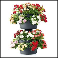 extraordinary self watering vertical planter cascading click to