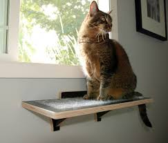 Cat Window Sill Perch Burnside Wall Perch For Cats By Square Cat Habitat