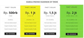harga obat hammer of thor update terbaru