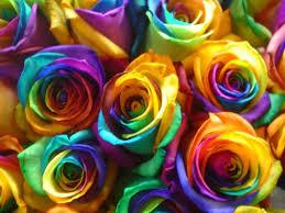 tie dye roses tie dye roses crafthubs