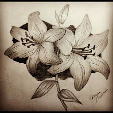 pencil drawings flowers art arst info