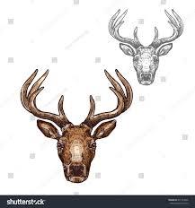 deer head sketch vector icon wild stock vector 671144536