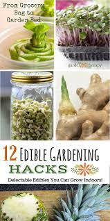 25 best gardening at home ideas on pinterest gardening dream