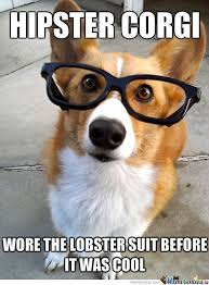 Hipster Dog Meme - hipster corgi corgi meme corgi and corgis