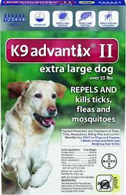 best 20 tick treatment ideas on pinterest dog tick treatment